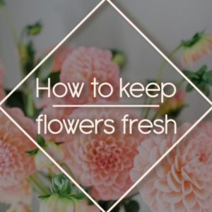 9 Easy Tricks How To Keep Cut Flower Fresh