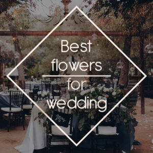 Best flowers for wedding